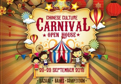 CHINESE CULTURE CARNIVAL